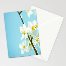 Blue & Blossoms Stationery Cards