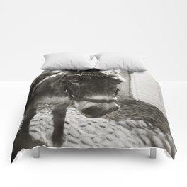{ cobblestone trooper } Comforters