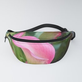 pink colored calla lily in the garden Fanny Pack