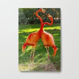 Flamingo heart Metal Print