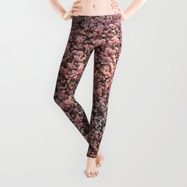 Bolle. Leggings