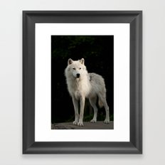Into the Light! Framed Art Print