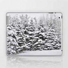 Winter Frosting Laptop & iPad Skin