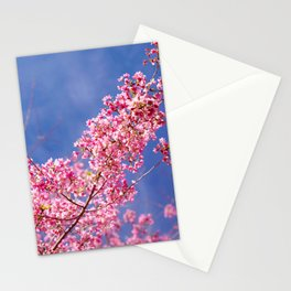 Peach blossom, Peach flower, Photo flower, Photo peach blossom Stationery Cards