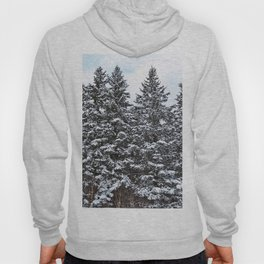 Evergreens Dusted in Snow Hoody