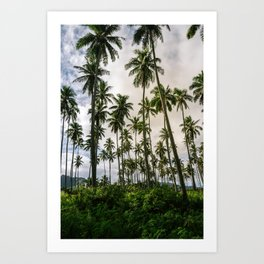 Palm Trees Kauai Hawaii Printable Wall Art | Tropical Beach Nature Ocean Coastal Travel Photography Print Art Print