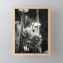 Clover and Daisies BW Framed Mini Art Print