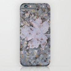 freezed Slim Case iPhone 6s
