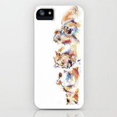 Pride of Samburu ... Lions iPhone (5, 5s) Slim Case