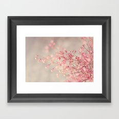 Coral Bells Framed Art Print