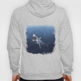 SHARK, Great white Hoody