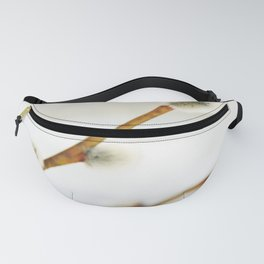 Willow branch with catkins Fanny Pack