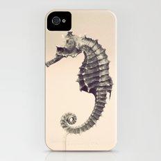 Water Pony iPhone (4, 4s) Slim Case