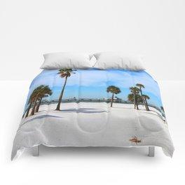 A Florida Winterday Comforters