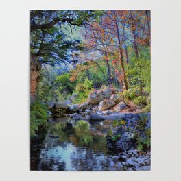 Lost Maples State Park Poster