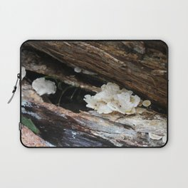 Where The Fairies Live Laptop Sleeve