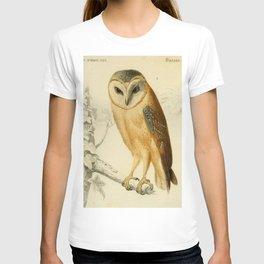 Naturalist Barn Owl T-shirt