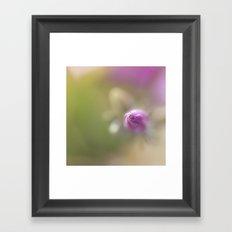 pink phlox in bokeh Framed Art Print