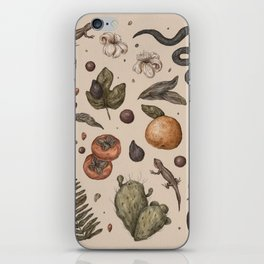 Florida Nature Walks iPhone Skin