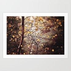 Last days of Autumn  Art Print