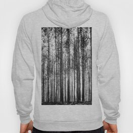 trees in forest landscape - black and white nature photography Hoody