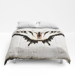 Rustic Butterfly Modern Cottage Chic Country Home Decor A475 Comforters