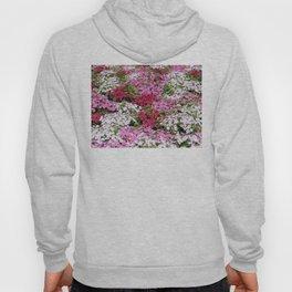 Pink & White Field Hoody