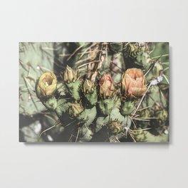Sketchy Cacti Metal Print