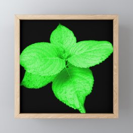 Glow In The Dark Leaves Framed Mini Art Print