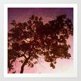 The Window's Tree Art Print