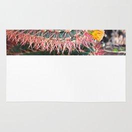 Barrel Cactus I Rug