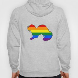 Rainbow Ferret Hoody