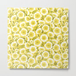 Bright summer flowers (Limnanthes flowers) Metal Print