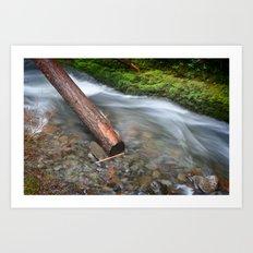 Oneonta Falls Log Art Print