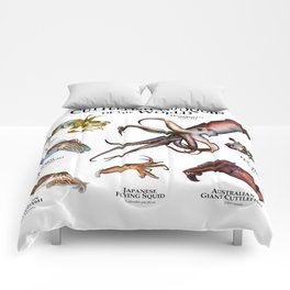 Cuttlefish and Squid of the World Comforters