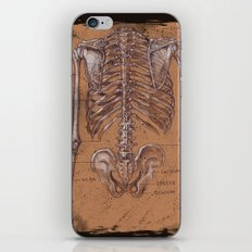 Jesse Young's Human Anatomy Drawing of Skeletal Structure of the Torso (Circa 2005) iPhone & iPod Skin