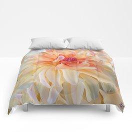 Dancing Dahlia Comforters