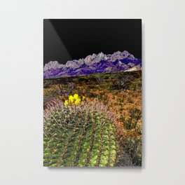 Blooming Barrel Cactus near the Organ Mountains, New Mexico Metal Print