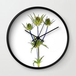 Thistle Cartoon Wall Clock
