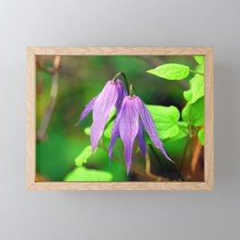 Purple Wildflowers of Montana Framed Mini Art Print