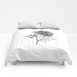 Ink pen chrysanthemum Comforters