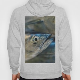 Big eye, tuna, fish, still life, photo, fine art, print, nature, sea, fishing, detail, blue Hoody