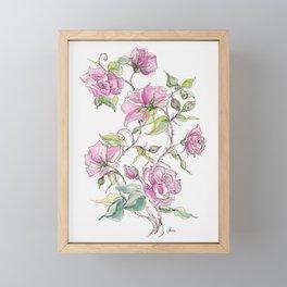 Pink Climbing Rose Framed Mini Art Print