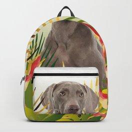 Weimaraner Dog in garden Backpack