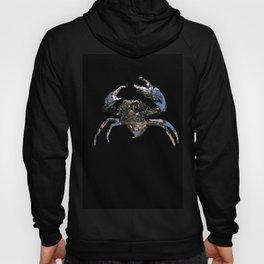 Mud Crab Scylla serrata Hoody