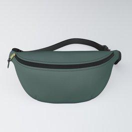 BM Hunter Green 2041-10 - Trending Color 2019 - Solid Color Fanny Pack