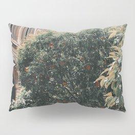 Orange Picking Pillow Sham