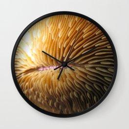 Solitary Coral Wall Clock