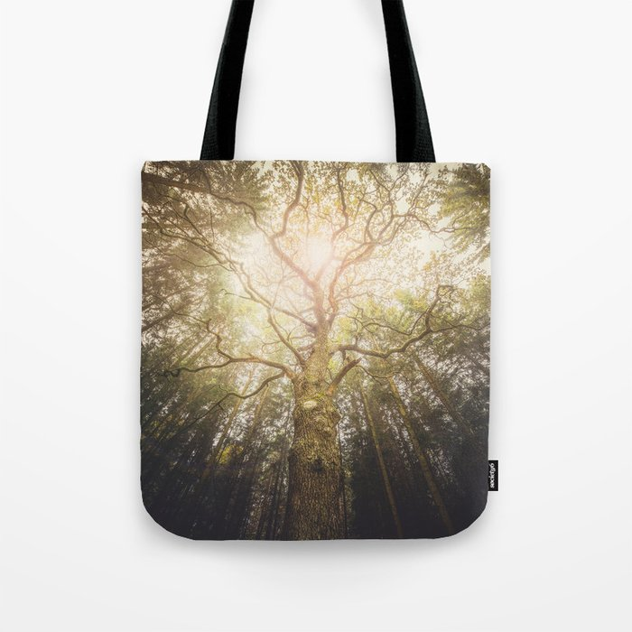 I found a tree in the forest Tote Bag