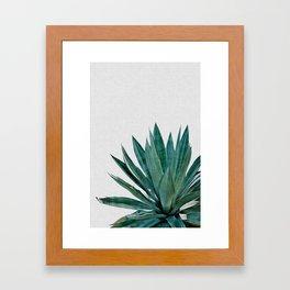 Agave Cactus Framed Art Print